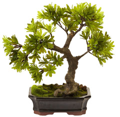4848 Podocarpus Artificial Bonsai Tree with Planter by Nearly Natural | 14""