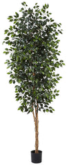 5427 Weeping Fig Ficus Artificial Silk Tree by Nearly Natural | 8 feet