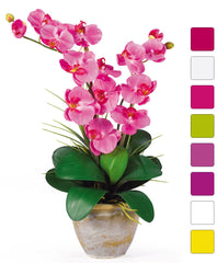 1026 Double Phalaenopsis Silk Orchid in 8 colors by Nearly Natural | 25""