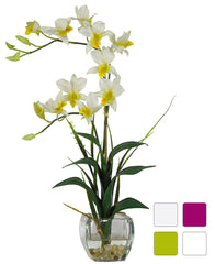 1135 Silk Dendrobium in Water in 4 colors by Nearly Natural | 22 inches
