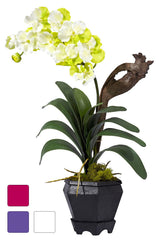 1252 Vanda Silk Orchid Plant in 3 colors by Nearly Natural | 24 inches