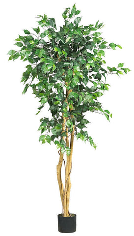 5208 Weeping Fig Ficus Silk Tree with Planter by Nearly Natural | 5 feet