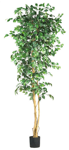 5210 Weeping Fig Ficus Silk Tree with Planter by Nearly Natural | 7 feet