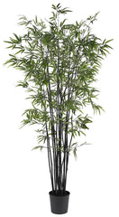 5277 Black Bamboo Silk Tree with Planter by Nearly Natural | 78 inches