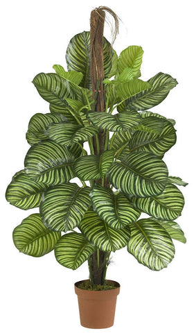 6588 Calathea Artificial Silk Plant w/Planter by Nearly Natural | 52 inches