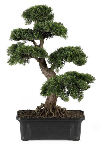 4103 Cedar Silk Bonsai Tree with Planter by Nearly Natural | 24 inches