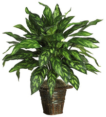 6615 Chinese Evergreen Silver King Silk Plant by Nearly Natural | 31 inches