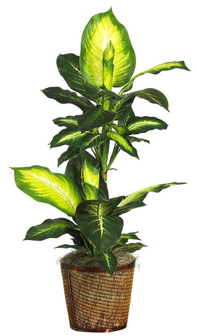 6593-0307 Golden Dieffenbachia Silk Plant by Nearly Natural | 42 inches