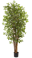 5463 Black Olive Artificial Silk Tree with Planter by Nearly Natural | 72""