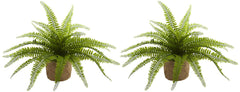 6814-S2 Boston Fern Set of 2 Silk Plants with Planters by Nearly Natural | 15""