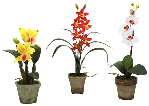 4985-A3-S3 Cattleya Cymbidium Phalaenopsis Orchids A3 S/3 by Nearly Natural | 19""