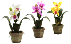 4067-AS-S3 Cattleya Orchid Set of 3 Silk Plants by Nearly Natural | 14.5 inches
