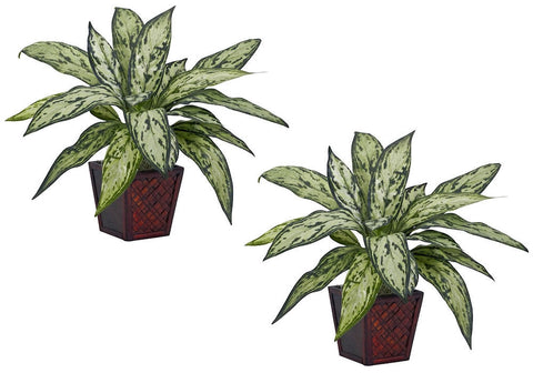 6694-S2 Chinese Evergreen Silver Queen S/2 Silk Plants by Nearly Natural | 12""