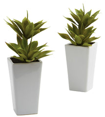 4971-S2 Double Mini Agave Set/2 Silk Plants by Nearly Natural | 11.5 inches