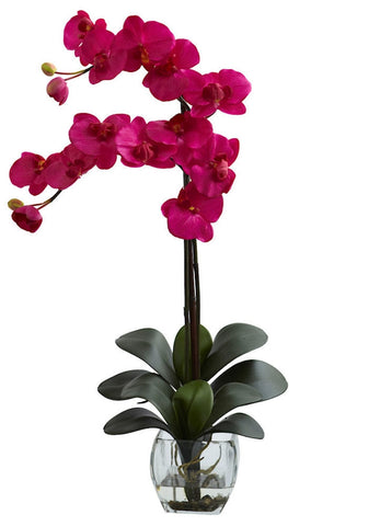 1323-BU Beauty Double Phalaenopsis Orchid in Water 8 colors by Nearly Natural | 27""