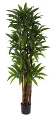 5403 Dracaena Artificial Tree with Planter by Nearly Natural | 6.5 feet