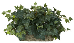 6707 English Ivy Silk Plant Set on Foam by Nearly Natural | 14 inches