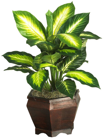 6592-0507 Golden Dieffenbachia Silk Plant by Nearly Natural | 20.5 inches