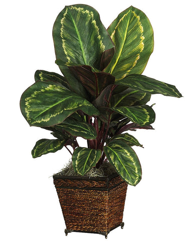 6590-0506 Maranta Artificial Plant with Planter by Nearly Natural | 26 inches