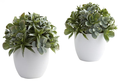 4962-S2 Mixed Silk Succulents S/2 White Planters by Nearly Natural | 8 inches