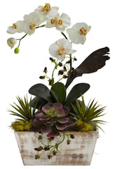 1326 Phalaenopsis & Succulent Silk Arrangement by Nearly Natural | 21""