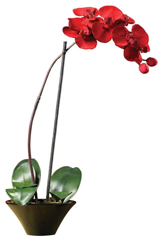 4859 Phalaenopsis Orchid Silk Holiday Flower by Nearly Natural | 20 inches