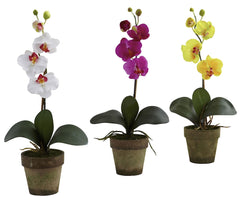 4065-AS-S3 Phalaenopsis Silk Orchid Set/3 Plants by Nearly Natural | 19 inches
