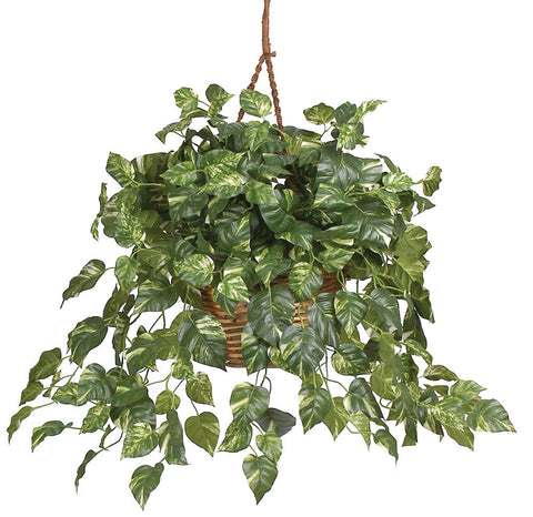 6517 Pothos Silk Plant w/Hanging Basket by Nearly Natural | 36 inches