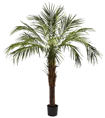 5366 Robellini Palm Artificial Tree w/Planter by Nearly Natural | 72 inches