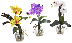 1339-A2-S3 Silk Orchids A2 Set of 3 in Water by Nearly Natural | up to 16 inches