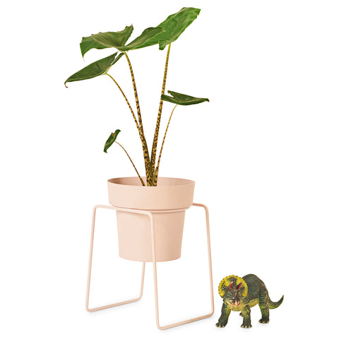 BUNDLE & SAVE!! BUD PLANT STAND & BIG POT - NEW!