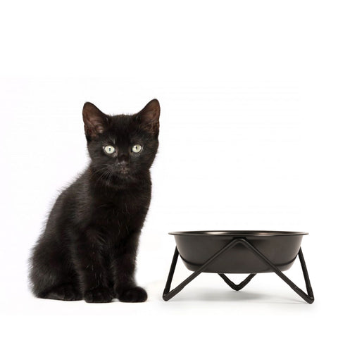 MEOW - BLACK ON BLACK (Black bowl on Black Stand) - NEW!!!