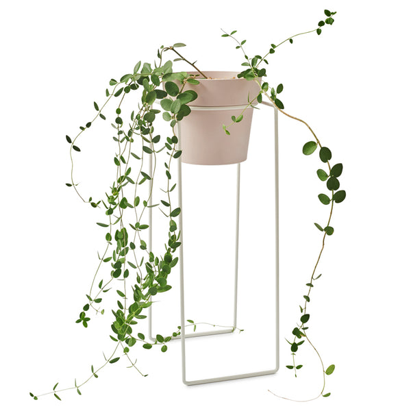 BUNDLE PLANT STAND TALL & POT M