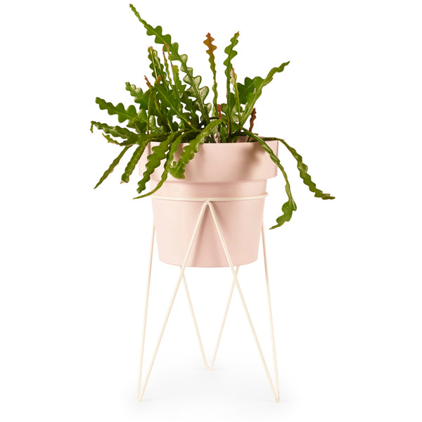 BUNDLE PLANT STAND & POT M