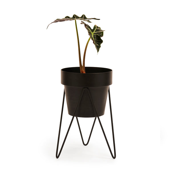 SPROUT - Plant stand mini - NEW!!!