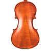 Rise by Sawtooth Beginner Violin with Flame Maple Back, Full Size