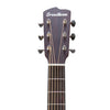 Breedlove Discovery Dreadnought CE Acoustic Electric Guitar with ChromaCast Strap, Stand, Picks, Tuner, GoDpsMusic Polish Cloth, and Breedlove Gig Bag