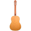 Rise by Sawtooth Full Size Beginner's Acoustic Guitar with Accessories, Satin Gold Stain