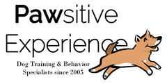 Sponsoring the Bend Spay and Neuter Project in Bend, Oregon to help end pet homelessness