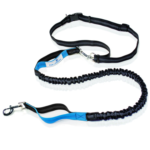 Hands Free Dog Leash, Premium Dual Handle Bungee Leash | For Running, Walking, Hiking - Paw Lifestyles Brand - Dog and Pet Products  - 1