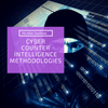 Cyber Counterintelligence Methods