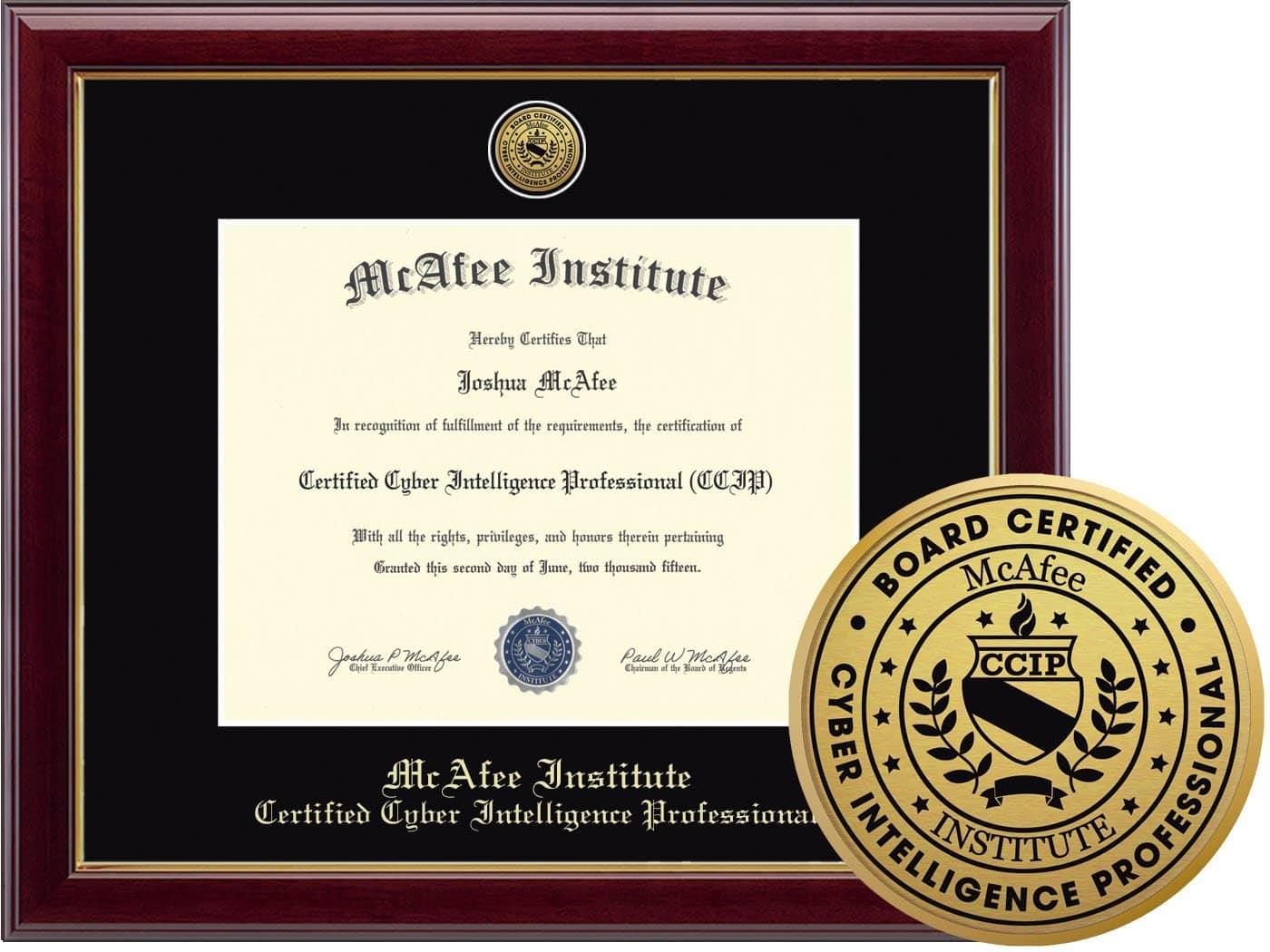 Certified Cyber Intelligence Professional Ccip