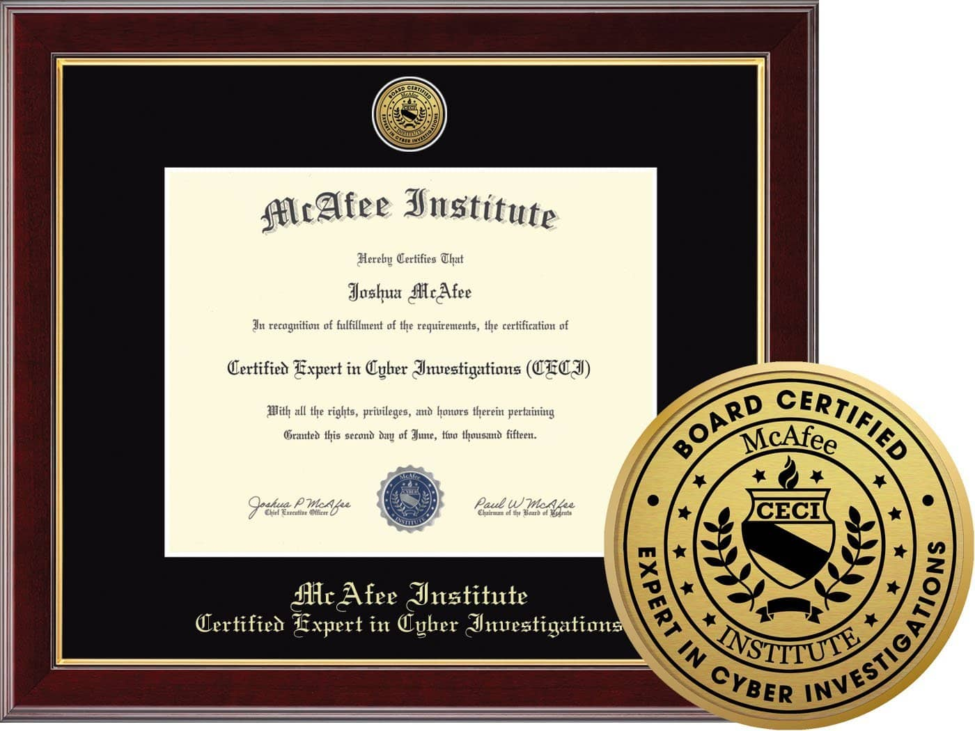 Certified Expert In Cyber Investigations Ceci