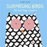 Surprising birds book