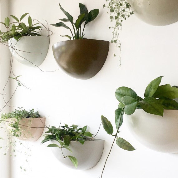 Unearthed - Wall Planters