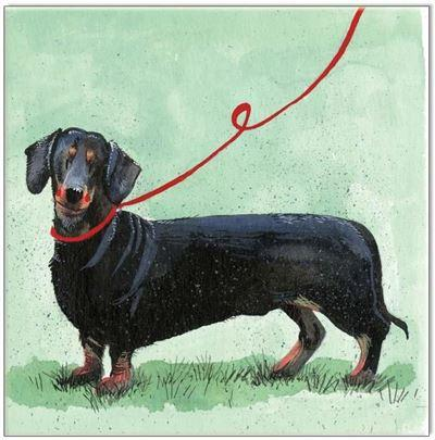 Waterlyn Gift Cards Dachshund - Global Free Style