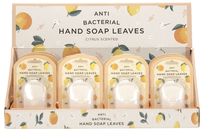 Annabel Trends Anti Bacterial Hand Soap Leaves Citrus Scented - Global Free Style