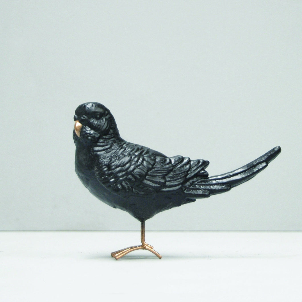 White Moose Budgie Black Gold - Global Free Style