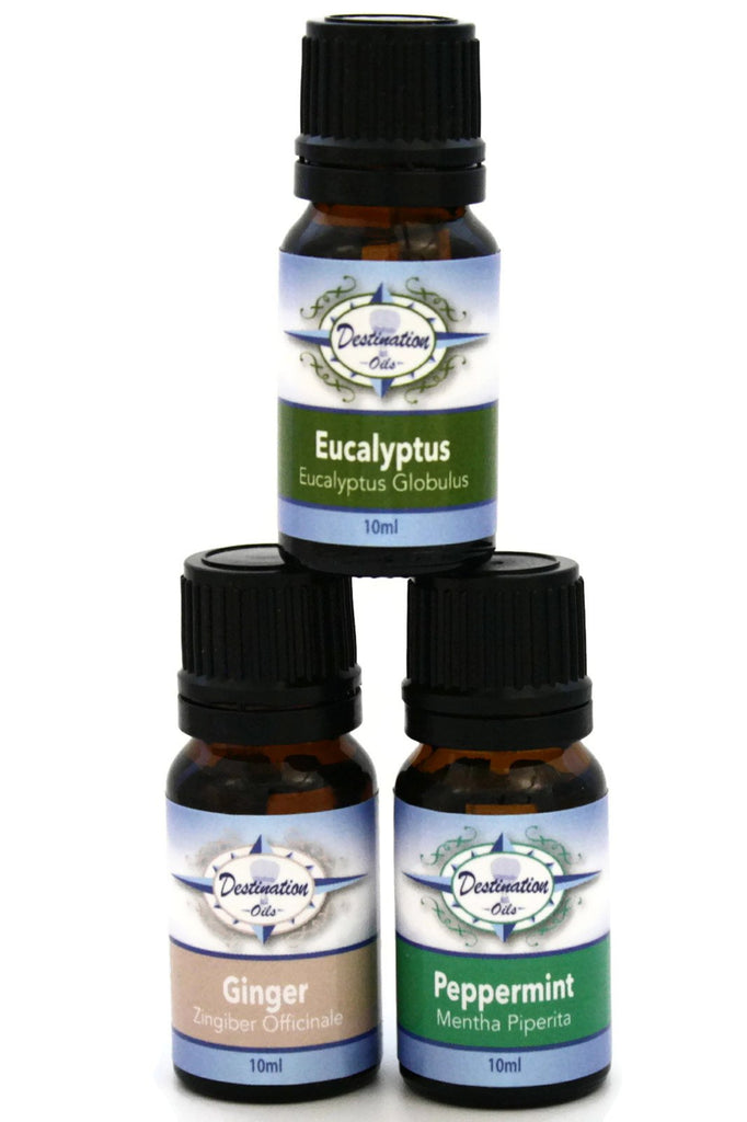 Stay Well Essential Oil Gift Set- Ginger, Peppermint, Eucalyptus - Gift Sets - Destination Oils