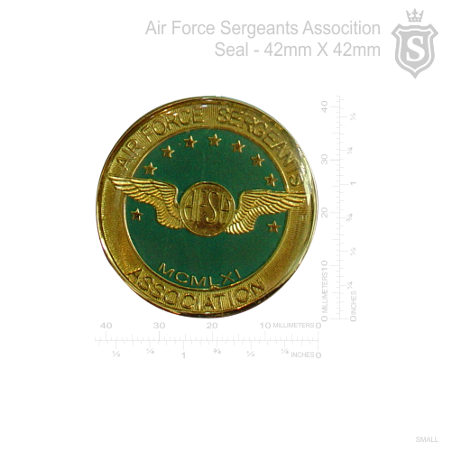 Air Force Sergeants Pin